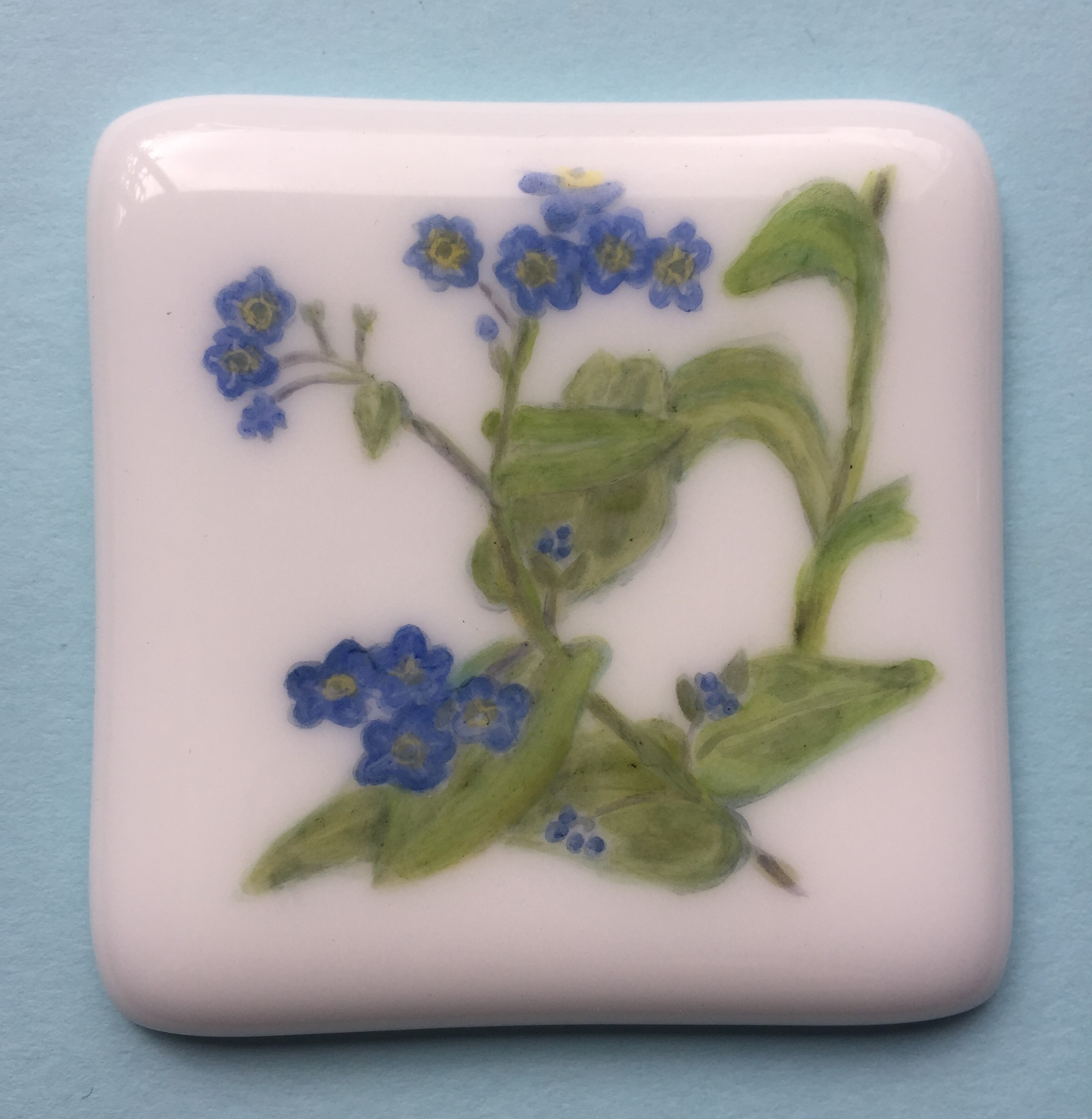 Flower study: Forget-me-nots painted in glass enamels and fired onto plain white glass