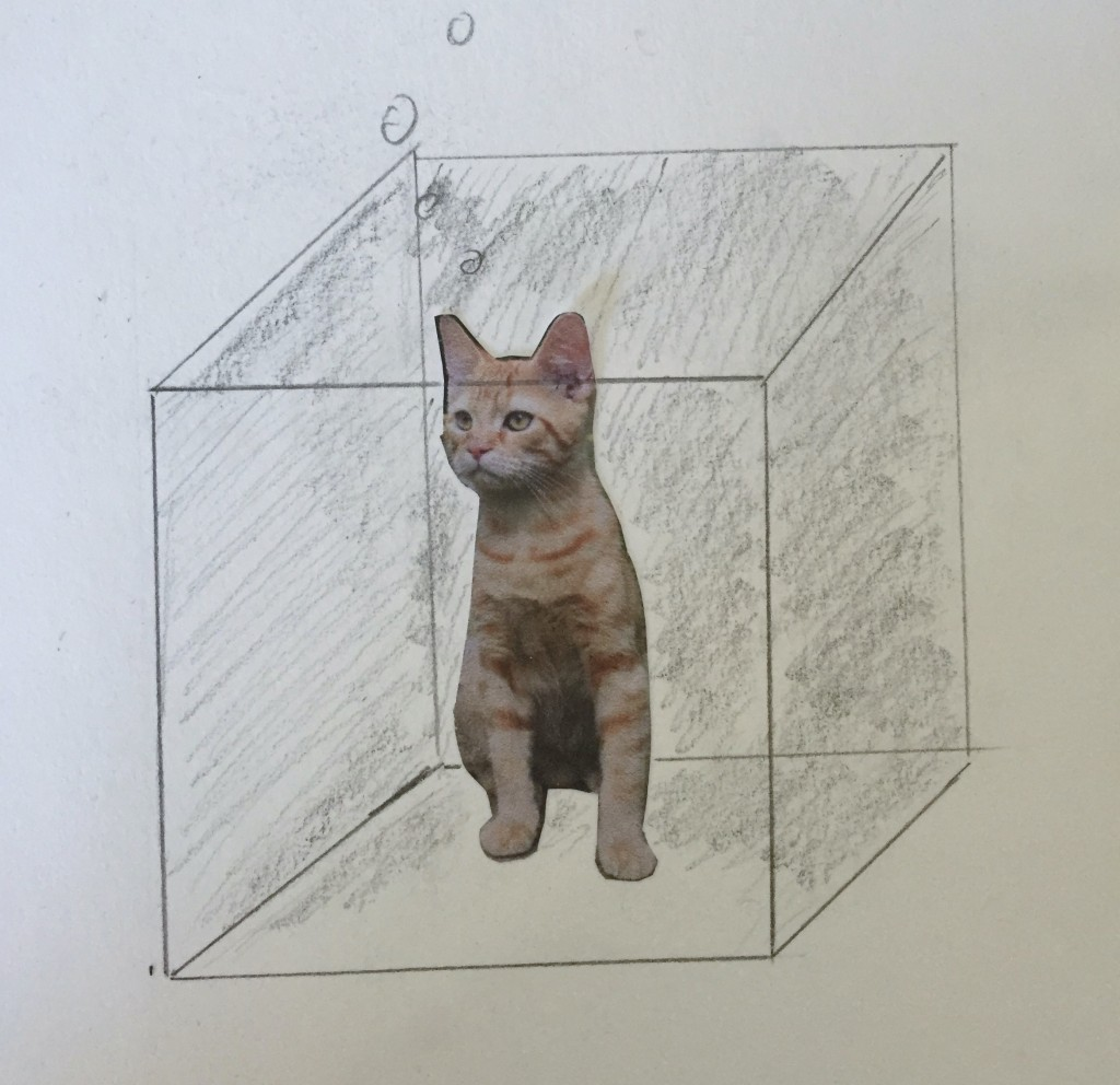 Collage of a cat inside a drawing on a boxto represent Schrödinger's cat