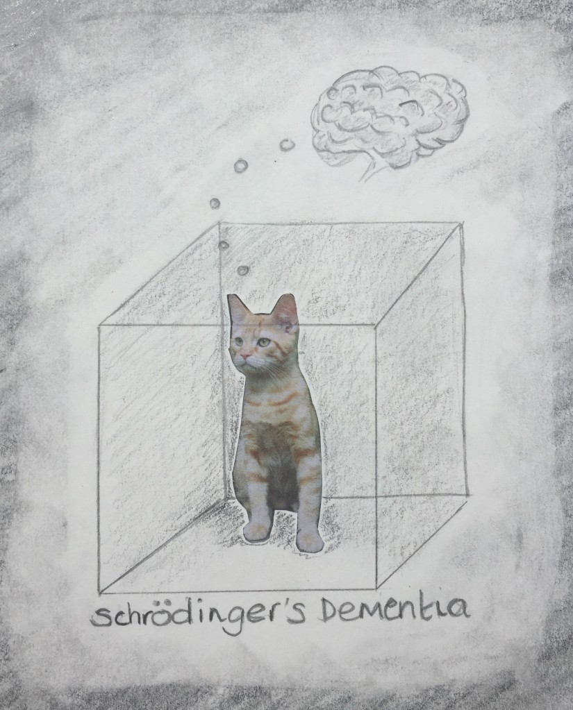 Collage of a cat inside a drawing on a boxto represent Schrödinger's cat, with a drawing of a brain to extend the idea to Schrödinger's Dementia